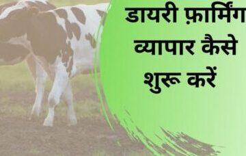 Dairy Farm Business Hindi